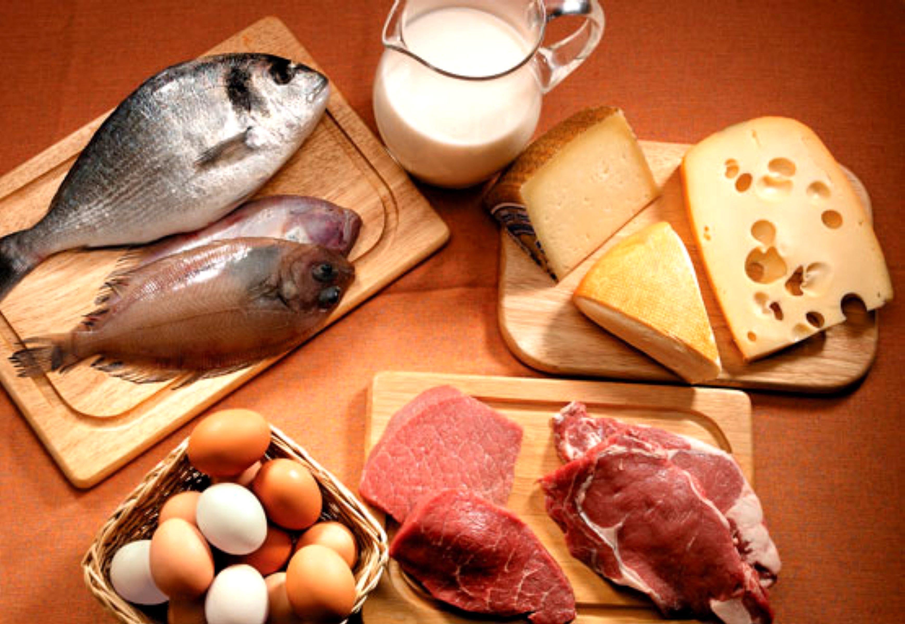 dieta-da-proteina-11